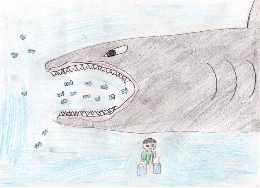 サメの飼育員